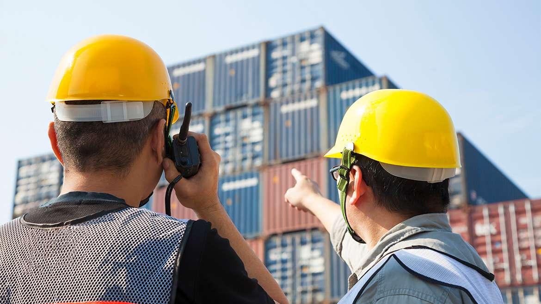 ¿Qué es la inspección FITO?