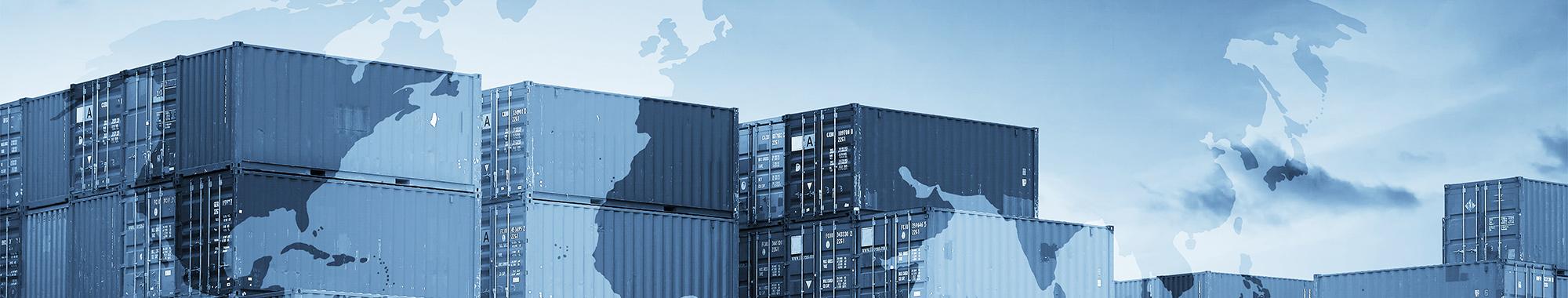 EORI (número de registro e identificación de los operadores económicos): Guía completa