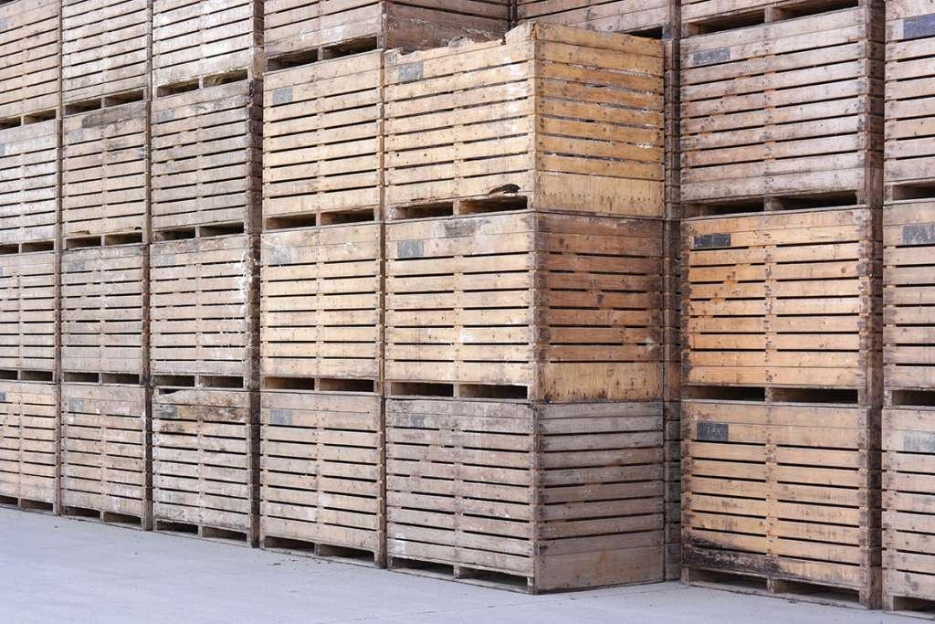 Las tasas de control fitosanitario de embalajes de madera aplicables hoy en día y cómo calcularlas