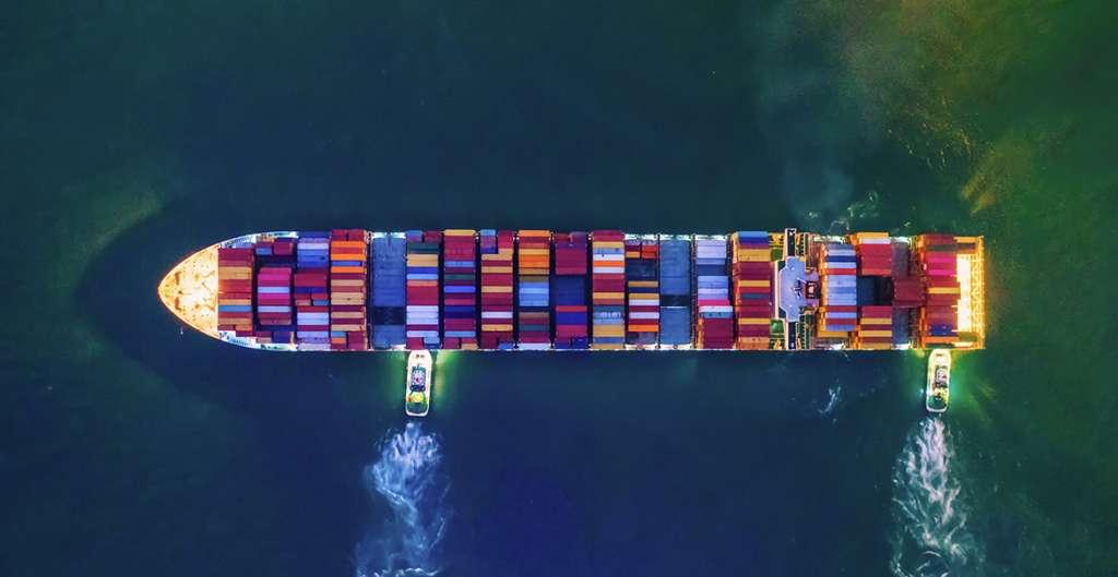 ¿Qué es el Sea Waybill y cómo debe utilizarse?